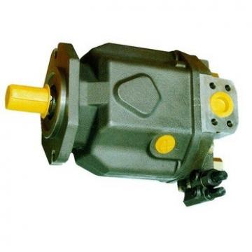 Rexroth Hydraulic Pump A10vso45 Series with Good Quality and Warranty