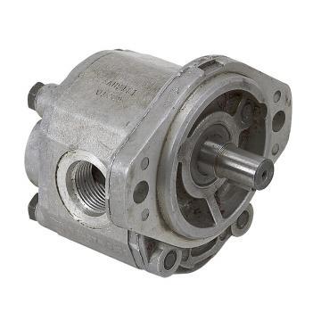 Rexroth Hydraulic Pumps A A4VSO 71 DFE1 /10L-PPB13N00 A4vso40/71/125/180/250/355 Hydraulic Motor in Stock